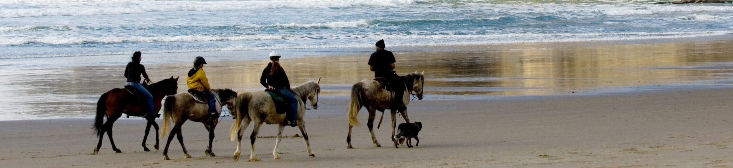 Horseback riding on a beautiful Oregon beach